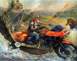Motorcycle Artwork - Sturgis Wildlife Series by Marc Lacourciere