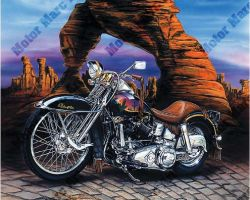 Motorcycle Artwork - Harley Davidson by Marc Lacourciere